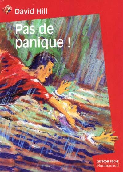 Pas de panique ! / David Hill | Hill, David (1953-....). Auteur