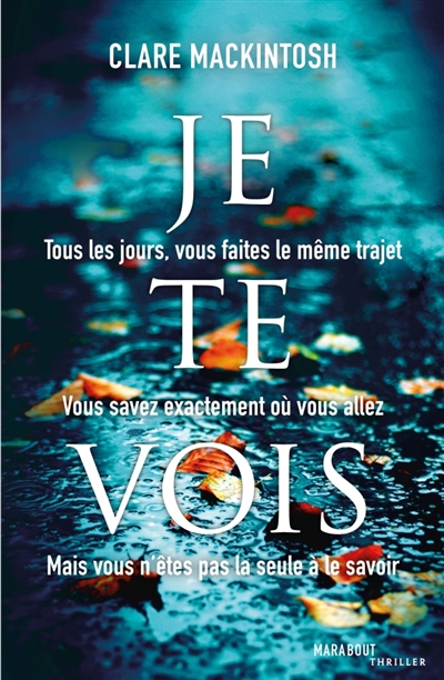 Je te vois / Clare Mackintosh | Mackintosh, Clare. Auteur