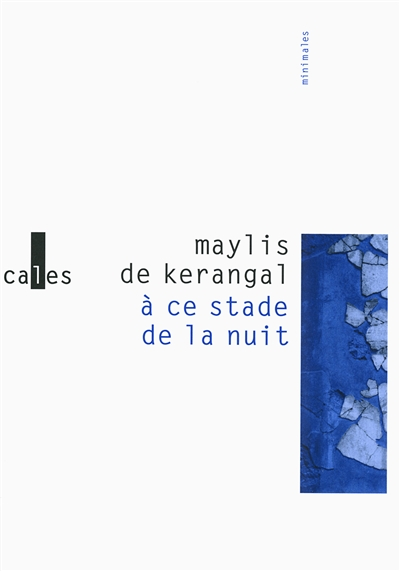 A ce stade de la nuit / Maylis de Kerangal | Kerangal, Maylis de, auteur