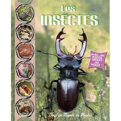 Les Insectes | Baillet, Christine (1965-....)