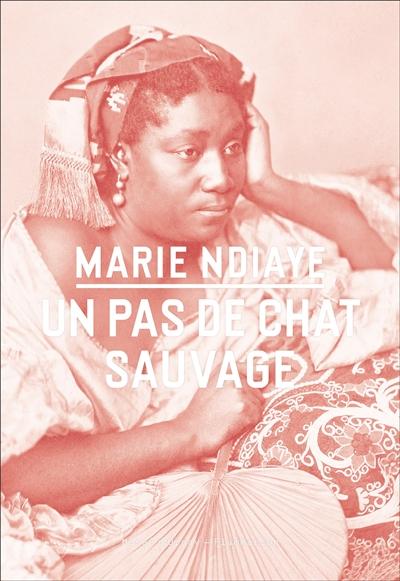 Un pas de chat sauvage / Marie Ndiaye   Ndiaye, Marie (1967-....). Auteur