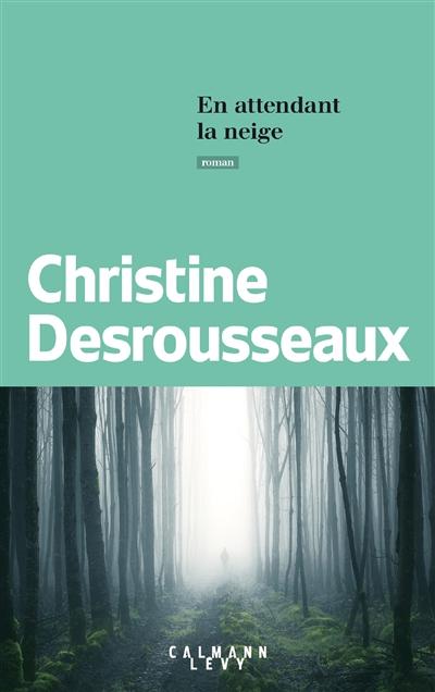 En attendant la neige / Christine Desrousseaux | Desrousseaux, Christine (1952-....). Auteur