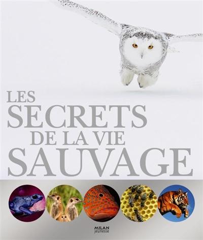 secrets de la vie sauvage (Les) | Burnie, David. Auteur