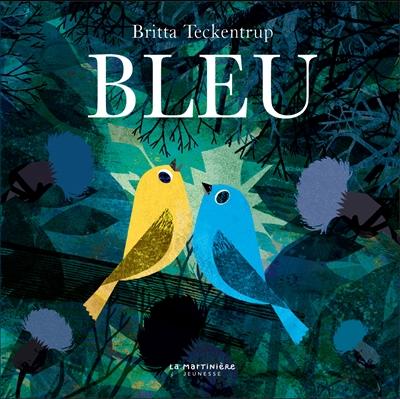 Bleu / Britta Teckentrup | Teckentrup, Britta. Auteur
