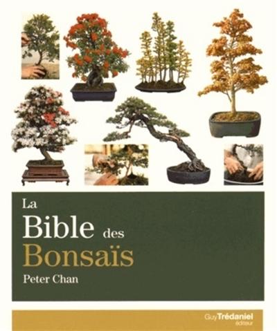 La-bible-des-bonsaïs-:-le-guide-complet-pour-choisir-et-créer-des-bonsaïs