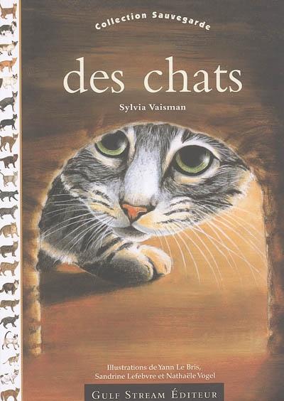 Des chats / Sylvia Vaisman | Vaisman, Sylvia. Auteur