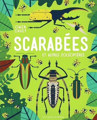 Scarabées : et autres coléoptères | Davey, Owen