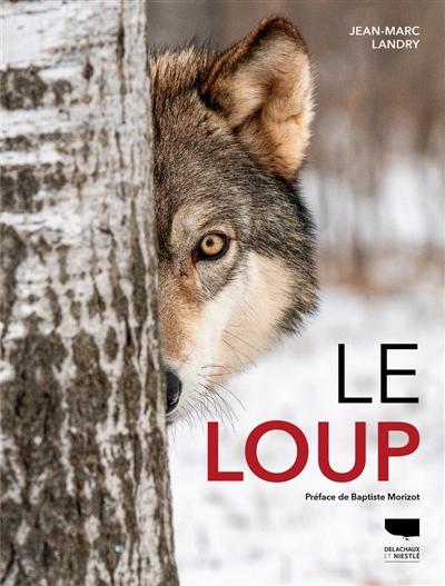 Le loup | Landry, Jean-Marc