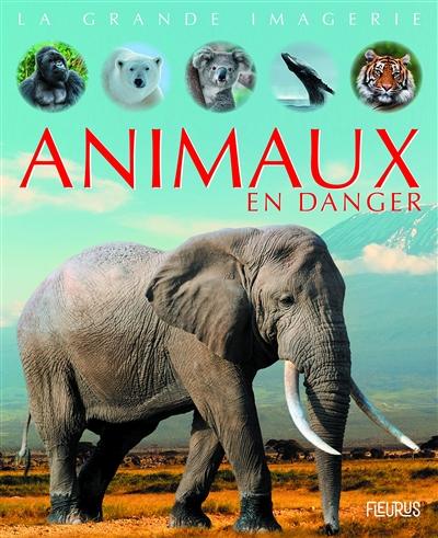 Animaux en danger | Sabine Boccador (1965-....). Auteur