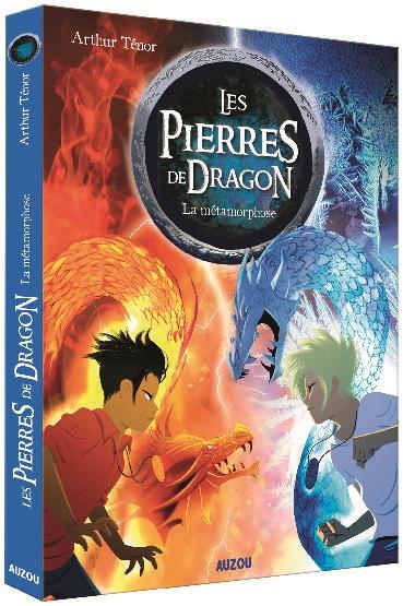 Les pierres de dragon. Vol. 1. La métamorphose