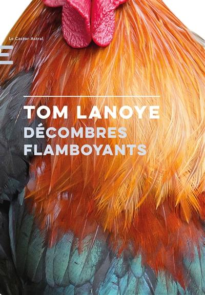 Décombres Flamboyants | Lanoye, Tom (1958-....). Auteur