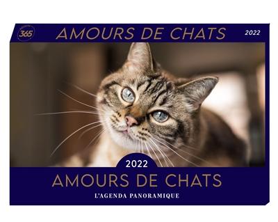 Amours de chats 2022 : l'agenda panoramique