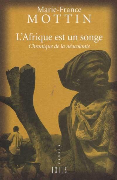 L'Afrique est un songe : chroniques de la néocolonie