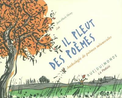 Il pleut des poèmes : anthologie de poèmes minuscules |