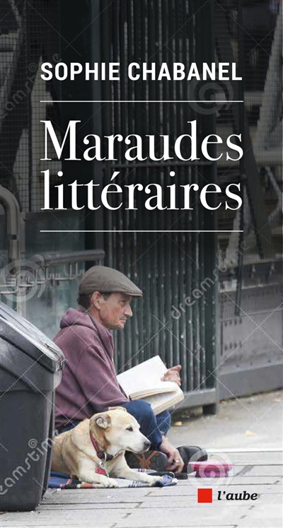 Maraudes littéraires