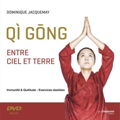 Qi gong : entre ciel et terre : immunité & quiétude, exercices daoïstes