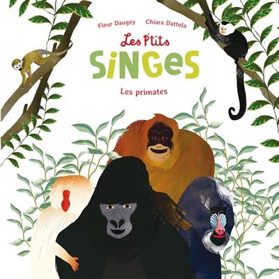 Les p'tits singes : les primates