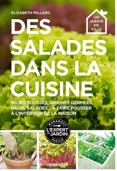 Des salades dans la cuisine / Elizabeth Millard | Millard, Elizabeth. Auteur