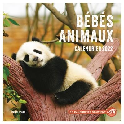 Bébés animaux : calendrier 2022