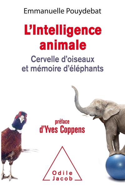 L' intelligence animale : cervelle d'oiseaux et mémoire d'éléphants   Pouydebat, Emmanuelle. Auteur